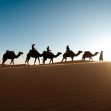 AVIAREPS invites travel trade and travel market partners to attend the Middle East Travel Caravans 2018
