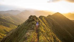 aviareps Livestream Global Travel Inteligence