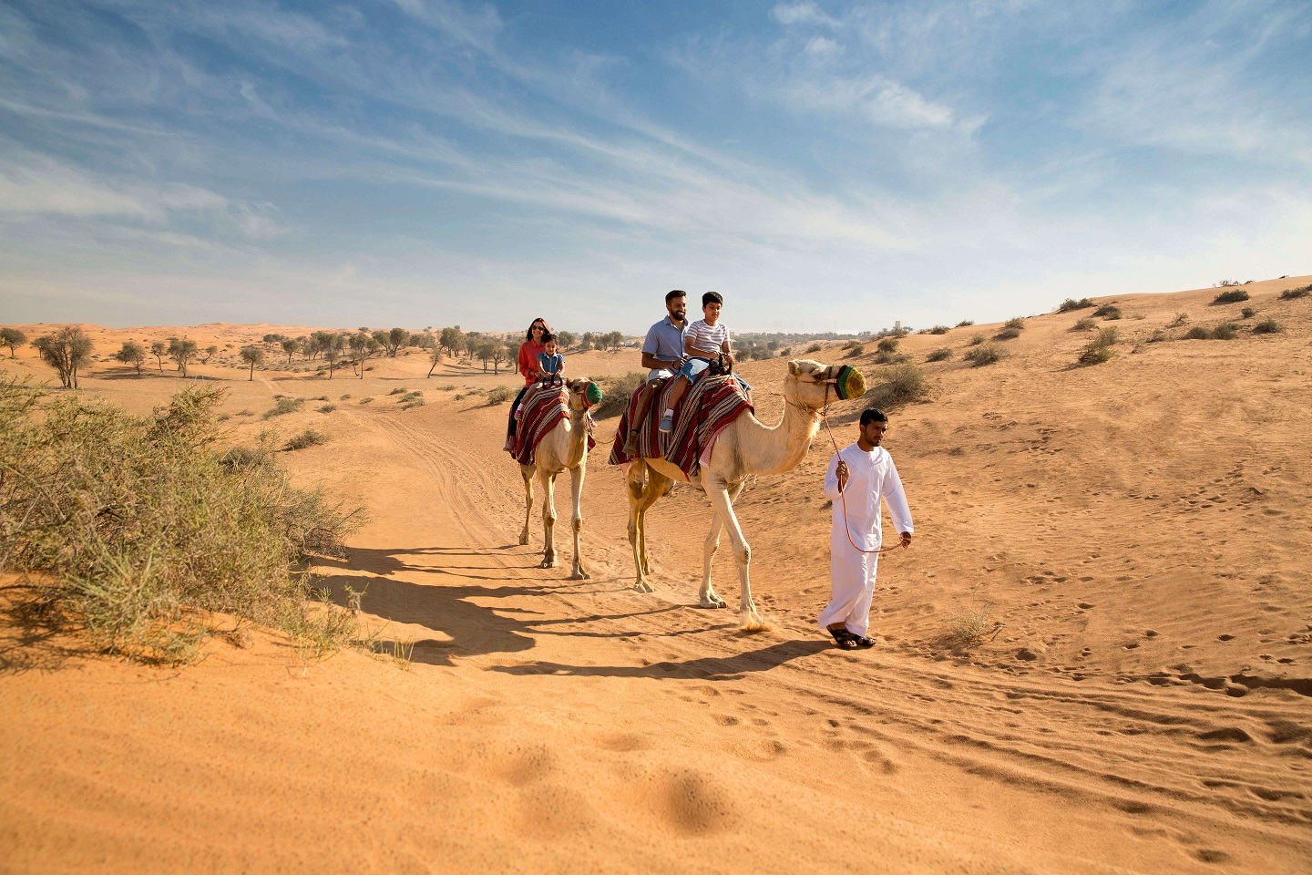 Ras-Al-Khaimah-Destination-Camel-Riding